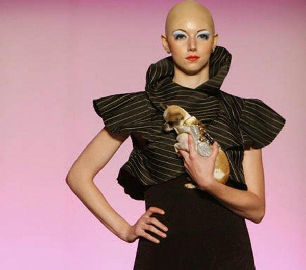 В Нью-Йорке состоялся показ мод для домашних питомцев