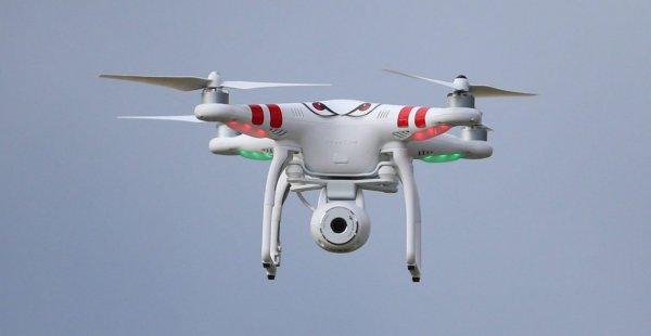 Минтранс предлагает сбивать нарушивших воздушные границы дронов
