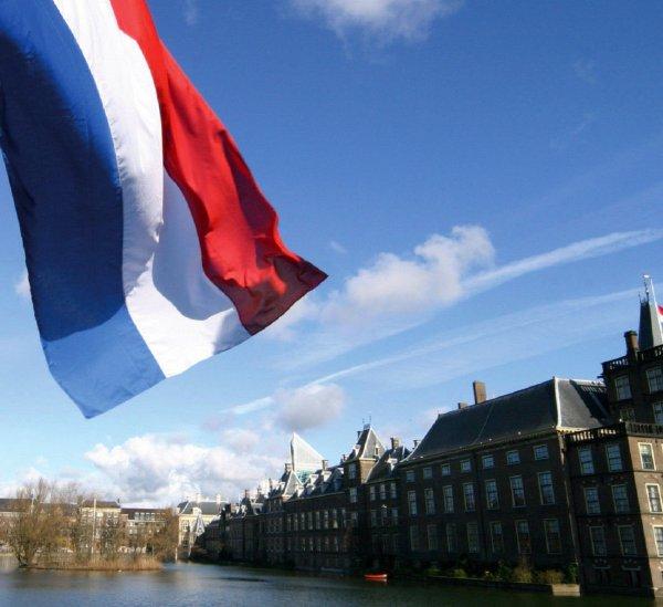 Всех граждане Нидерландов принудительно станут донорами органов