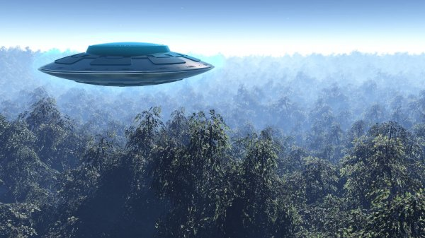 В Бостоне увидели НЛО над деревьями
