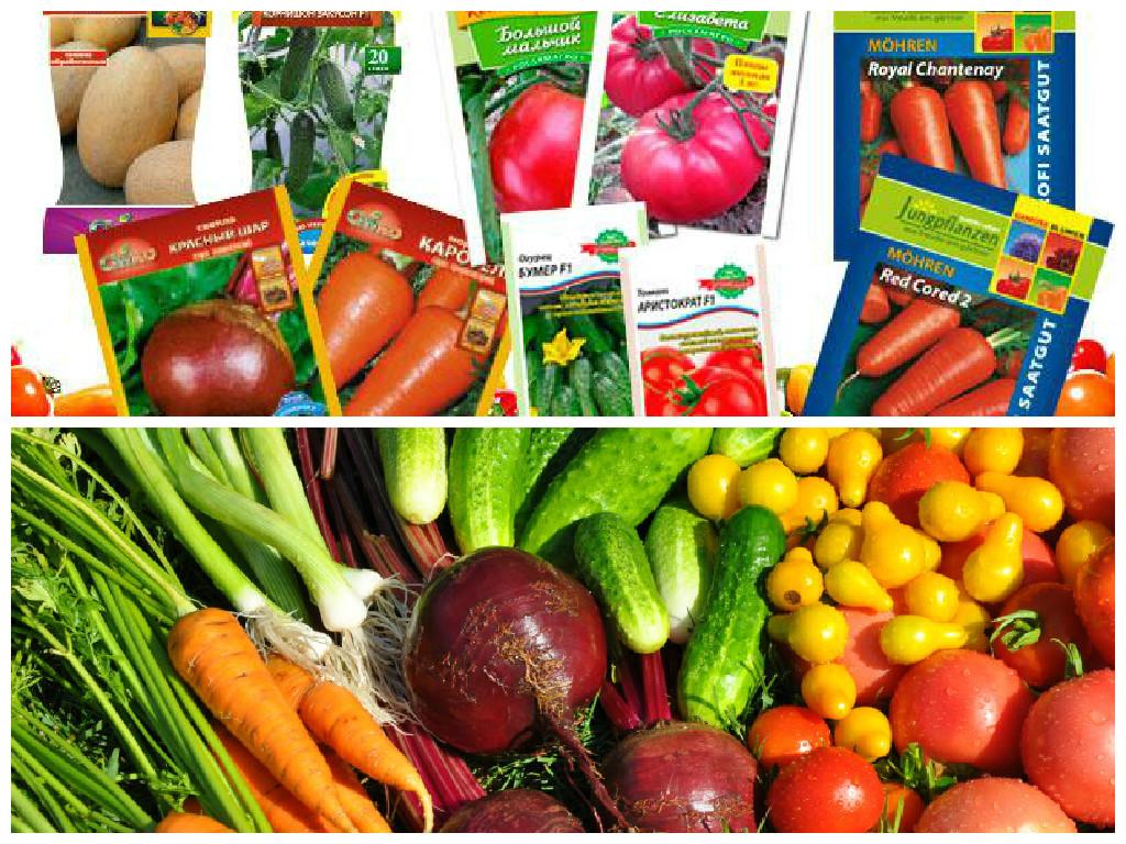Лучший выбор семян овощей и ягод