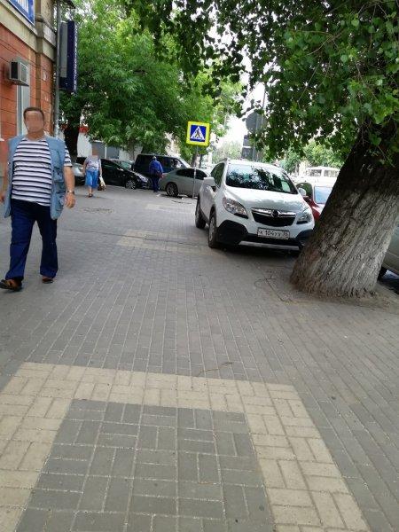 В Воронеже назвали «петушиным делом» борьбу с автохамами