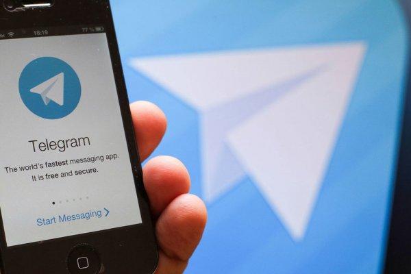 В Госдуме назвали блокировку Telegram бестолковой и смешной