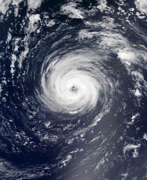 США может обеднеть на один миллиард из-за урагана «Альберто» - Bloomberg
