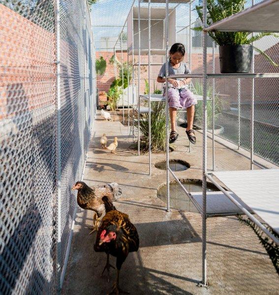 Детки в клетке: вьетнамцы предложили внукам играть в курятнике