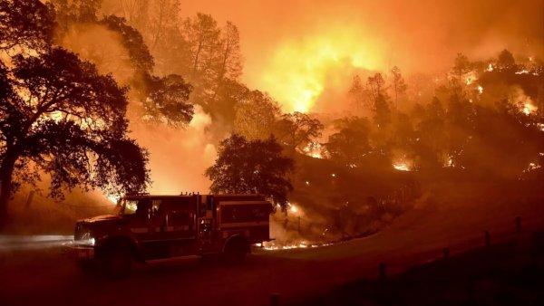 В Калифорнии горят свыше 15 тыс. гектаров леса