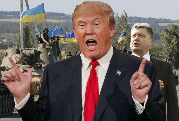 «Растеряют боевой дух»: НАТО едет на Украину перенимать опыт ВСУ