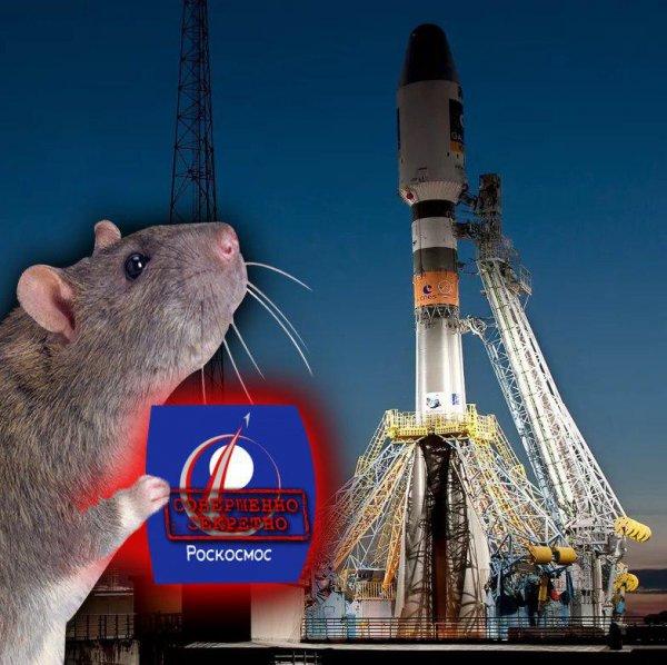 Крыса из Роскосмоса. Яскин может «слить» российские секретные разработки главам США