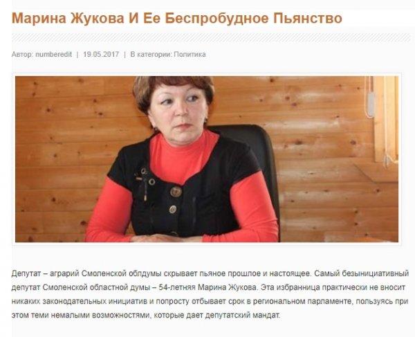 Маленькое, зато свое: Председатель Госдумы Володин «готовит почву» для бизнеса матери в Смоленской области?