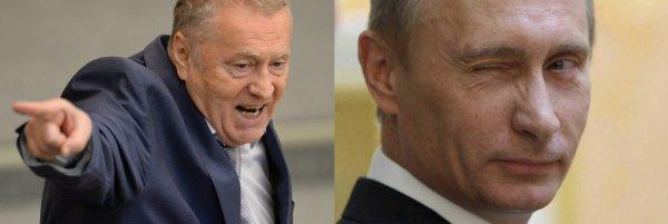 Мастак переобуваться в воздухе: Своими громкими заявлениями Жириновский сохраняет рейтинг Путина