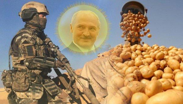 ССО ГРУ уничтожит миротворцев и спецназ Лукашенко у границ ДНР — эксперт