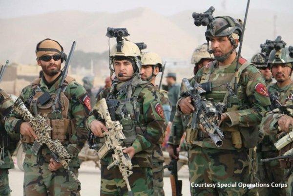 Всего 40 трупов: Афганские коммандос провели первую самостоятельную операцию против боевиков