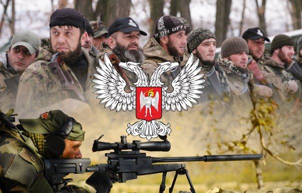 «Кровью» офицера Чеченский спецназ ликвидировал легендарного снайпера в ДНР — версия